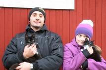 Katterne Pixi och Felix tillsammans med Emelie och Dijar