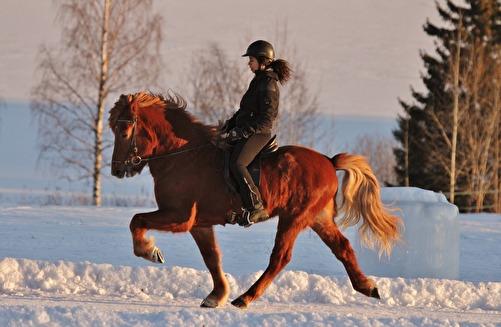 Thengill från Jan Pers -2011