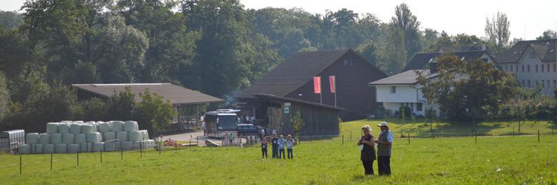 Rinderknechts Beef Ranch