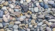 Du behöver verkligen inte vända på varenda sten för att hitta en leverantör av bilder - kontakta falkenbergsbild.se - mer än bara bilder.
