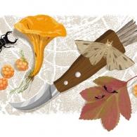 Skogens guld, Digital illustration