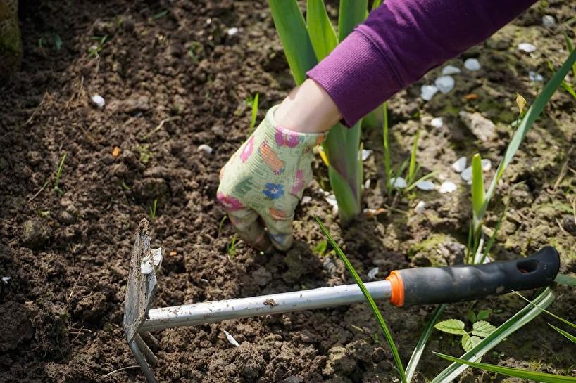 Trädgårdsverktyg hos Gräsklipparguiden