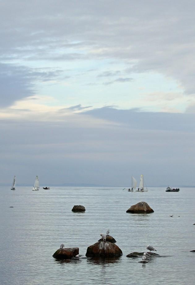 Dom flesta ser seglingen så här..lite vita prickar. Jag vill med mina bilder visa hur det är ombord för er som aldrig varit på en segelbåt.