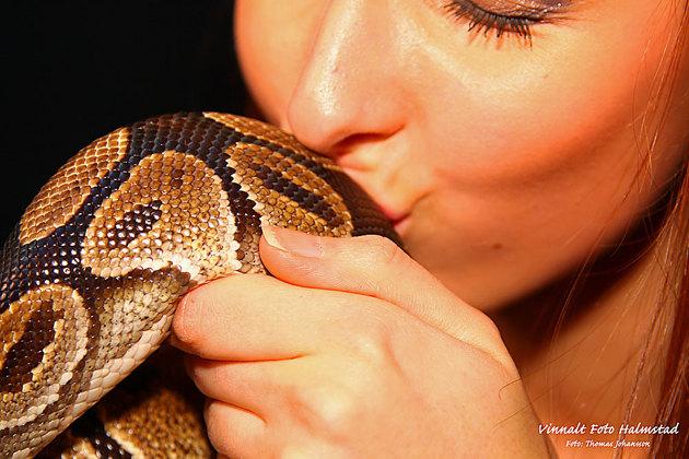 Efter en viss påtryckning fick jag Paulina att pussa ormen....