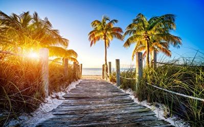 Florida-Karibien -