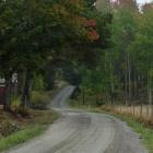 Autumn at Sältet