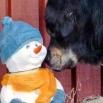 Simus and snowman P1620574