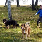 Martin, Disa and Humla at Old UppsalaP1670049
