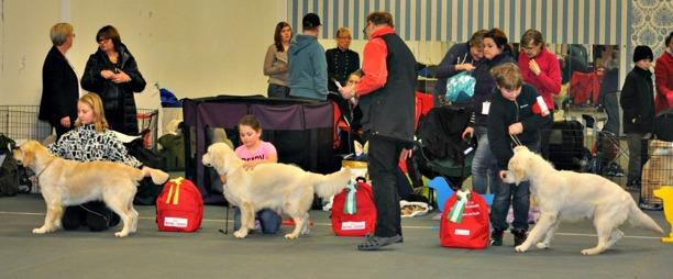 Barn med hund, mycket duktiga handlers, E. Wimmer m. Poppy, Tyra Englund m. Abbey och Oskar Olsson m. Berra.