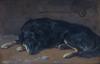 Levande hund som modell, från akademitiden, Uppsala auktionskammare