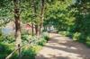 Solbelyst landskap 1924, Bukowskis