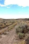 Vägarna var långt fram i tiden tillkomna utan särskilda anläggnings-arbeten. De hade skapats av boskapen och häst/oxe och vagn.