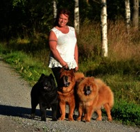 """Me- Anna-Lena with three of our chows. From left Sofia, Doncho and Ella. This picture has also been in swedish dogmagazine """"Härliga Hund"""""""