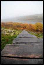 Stairs to heaven. Photo Thomas Thore