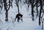 Jagr bringar hem ripan