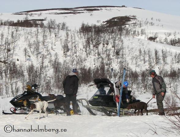 Skotertransport ut i markerna underlättar.  Foto: Hanna Holmberg,