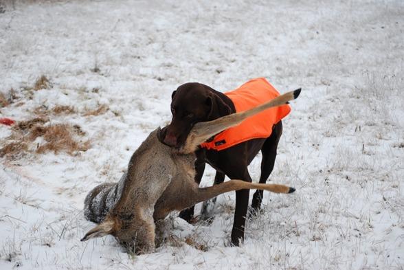 Vinterdäck på...snart blir det spårsnö.