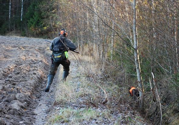 Springa på löpa ochj skjuta över sin hund är något man ofta glömmer att träna...inte konstigt det blir bom ibland...