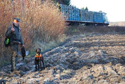 15 okt - fasarnerna låg oroväckande nära järnvägen.
