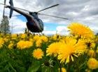 En av våra helikoptrar möter våren i Överkalix