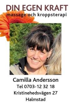 Camilla Andersson, Mentor of Transfigura Method, Diplomerad massör och Grafisk formgivare