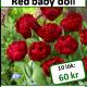 Red baby doll, 10 lökar
