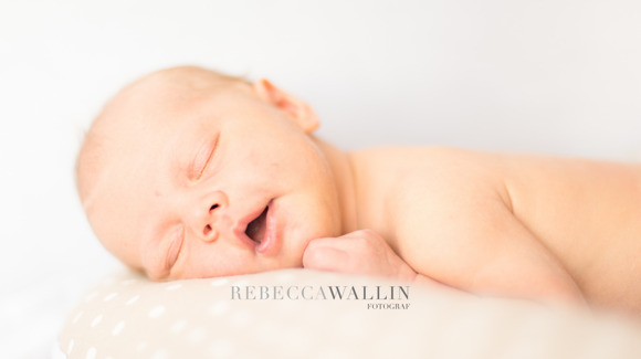 Barnfotograf Rebecca Wallin, Skåne