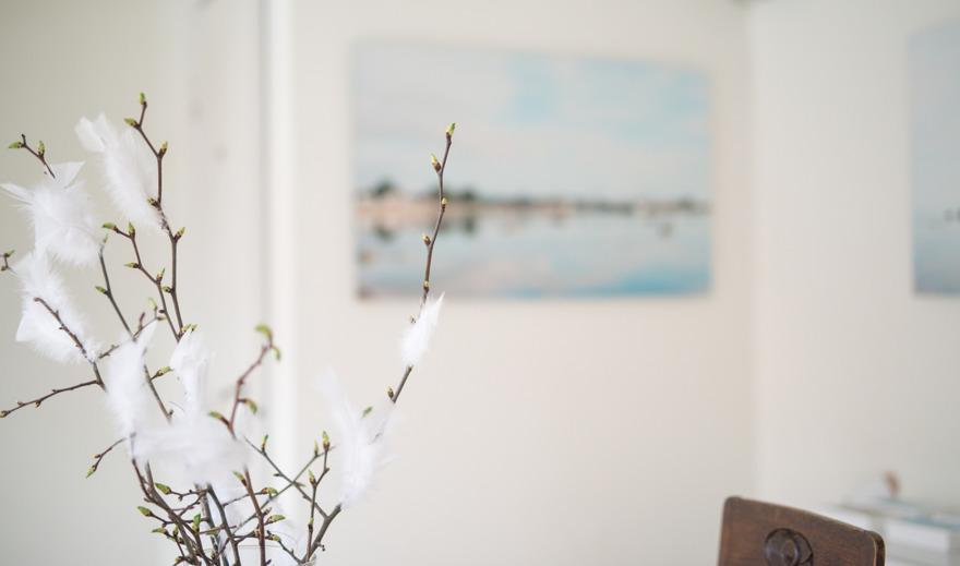 Fotokonst Österlen Calling home/ våen 2016