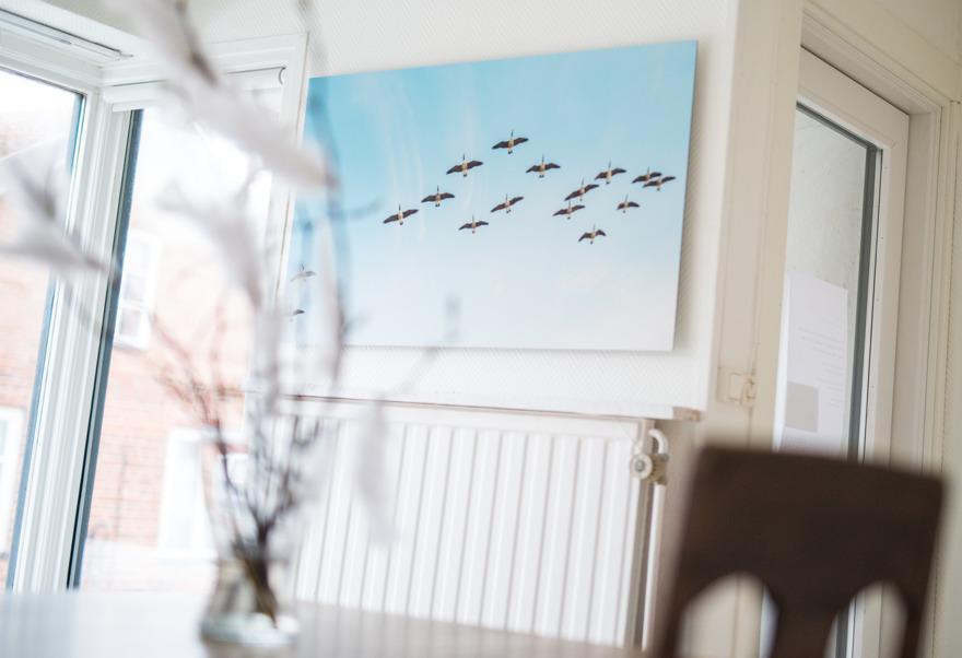 Fotokonst Österlen Calling home/Up and away