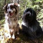 Teide och kompis