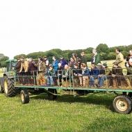 Denham wagon