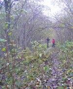En småregnig och gråmulen dag på Borgundaberget!