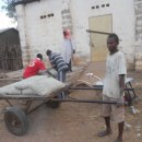 Youth transporting the materials to the construction site
