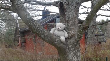 Jag väntar på att min kompis ska gå klart i knytte skogen