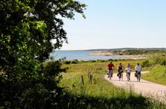 Första dagen följer du en av Kattegattledens vackraste sträckor längs kusten söderut förbi strandängar, hedlandskap och små badstränder.