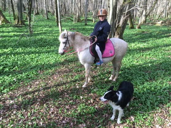 """Jonna our Dauther on her ponie """"Vitnos"""" this weekend."""