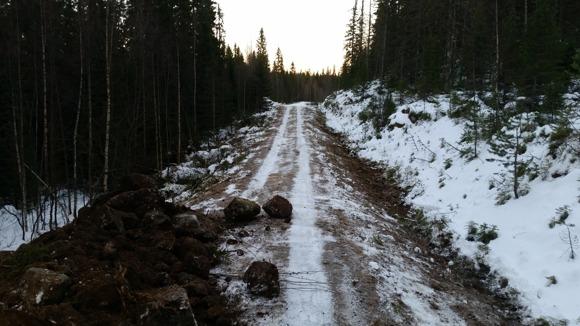 Uffes jobb nånstans mitt i skogen söder om Härnösand: gräva diken och fixa skogsväg.