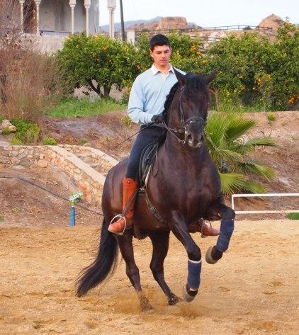 Francisco och Activo X