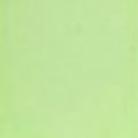Encaustic - Konstvax - Pistagegrön - Pastell (Beställningsvara)