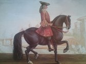 """Från boken """"The Classical Riding Master"""" by Reis baron d´Eisenberg commentery by Doreen Williams"""