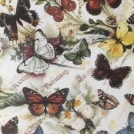 Fjärilar 50x70