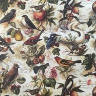 Fåglar 50x70