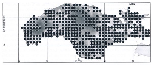 Kartan är lånad från Pierre Delforges rapport från 2008 och visar med en prick i varje 1 x 1 km-ruta om det påträffades orkidéer i det området.