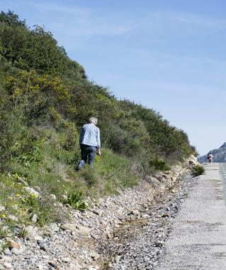 Rewarding roadside walk