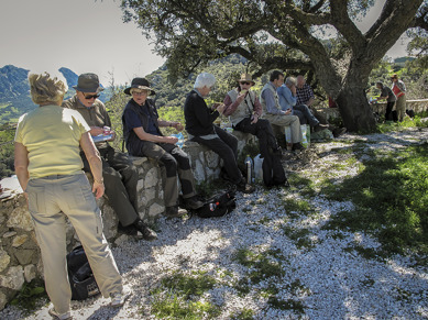 Lunch break in the shade of an olive tree just outside Gaucin
