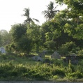 bagamoyo graveyard