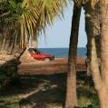 red car at palm beach