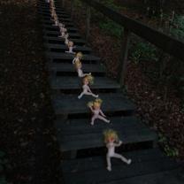 lang trapp