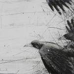 Orion Righard Black Birds 3 w