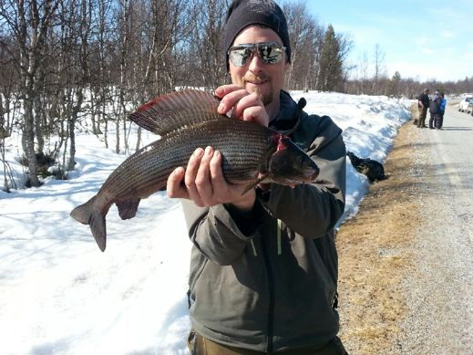 Hans tog en 1,3 kilos harr på en av deltävlingarna i Särna cup. Isen var enligt rapporter 1 meter tjock!